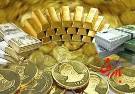 دلار یورو سکه طلا ارز مسافرتی