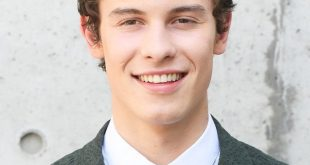 roses Shawn Mendes